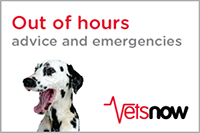 Vets Now Out Of Hours Service